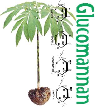 Glucomannan-Plant_350x350